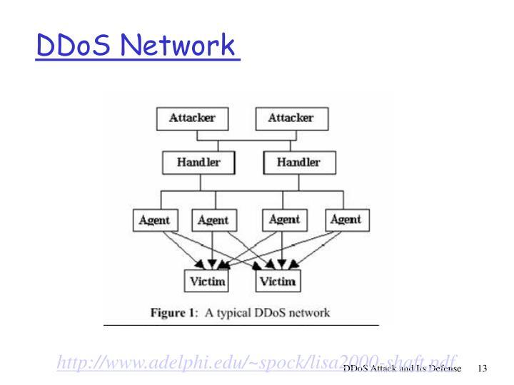 DDoS Network