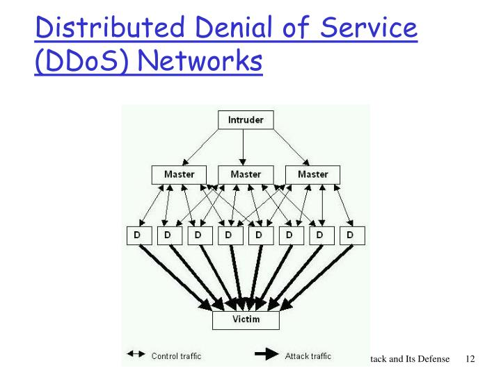 Distributed Denial of Service (DDoS) Networks