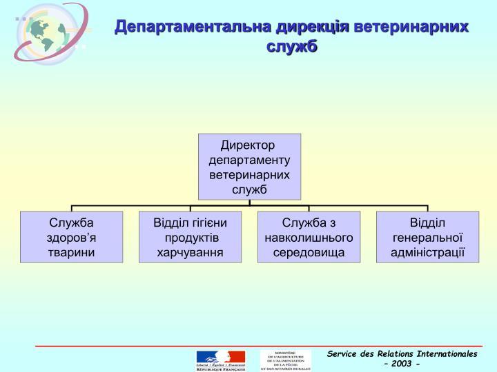 Департаментальна дирекція