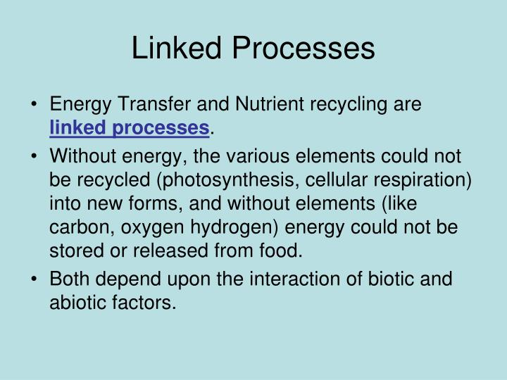 Linked Processes