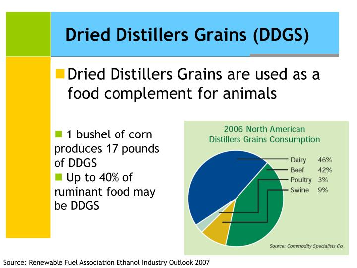 Dried Distillers Grains (DDGS)