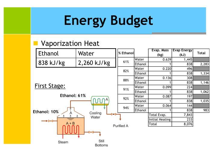 Energy Budget