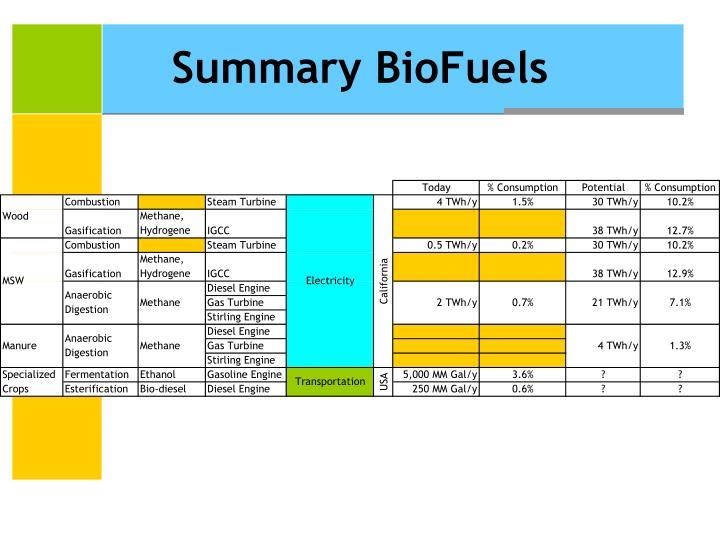 Summary BioFuels