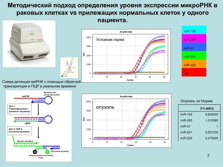 Методический подход определения уровня экспрессии микроРНК в раковых клетках