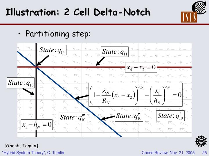 Illustration: 2 Cell Delta-Notch
