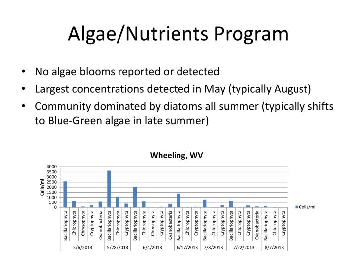 Algae/Nutrients Program