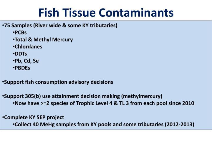 Fish Tissue Contaminants