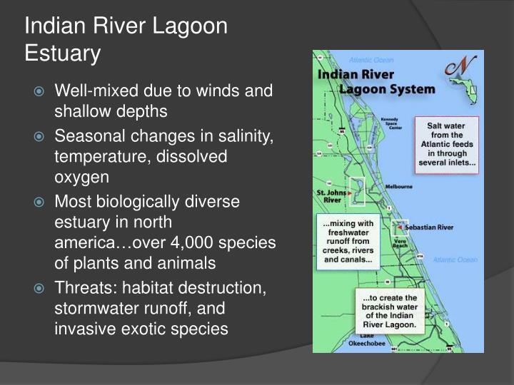 Indian River Lagoon Estuary