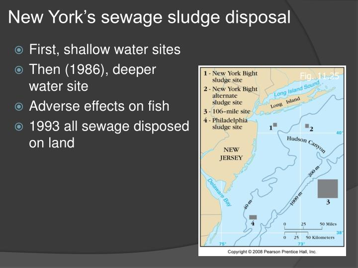 New York's sewage sludge disposal