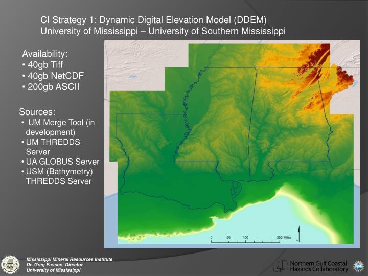 CI Strategy 1: Dynamic Digital Elevation Model (DDEM)