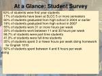 at a glance student survey