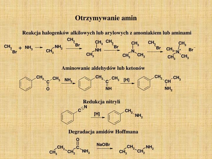 Otrzymywanie amin