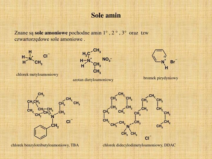 chlorek metyloamoniowy