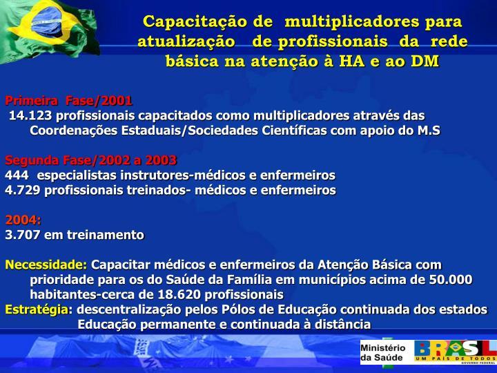 Capacitao de  multiplicadores para atualizao   de profissionais  da  rede bsica na ateno  HA e ao DM