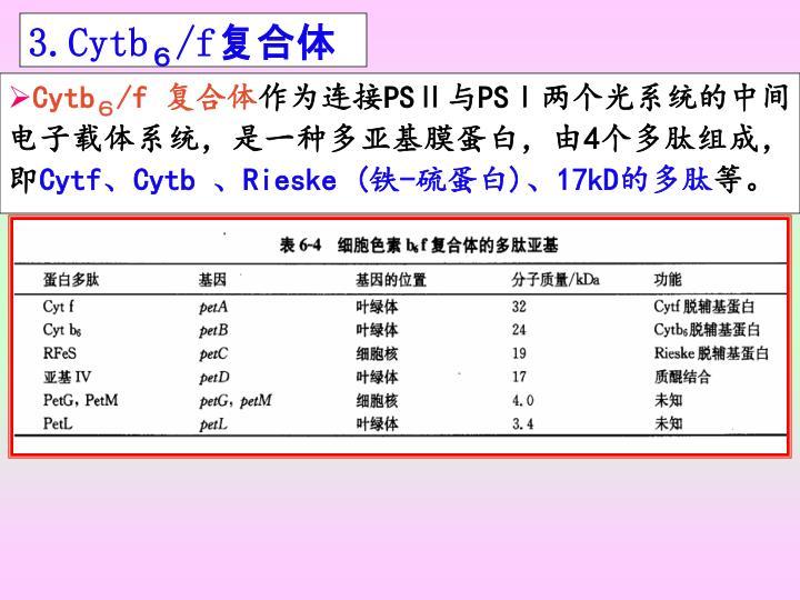 3.Cytb