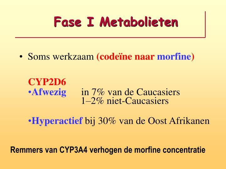 Fase I Metabolieten