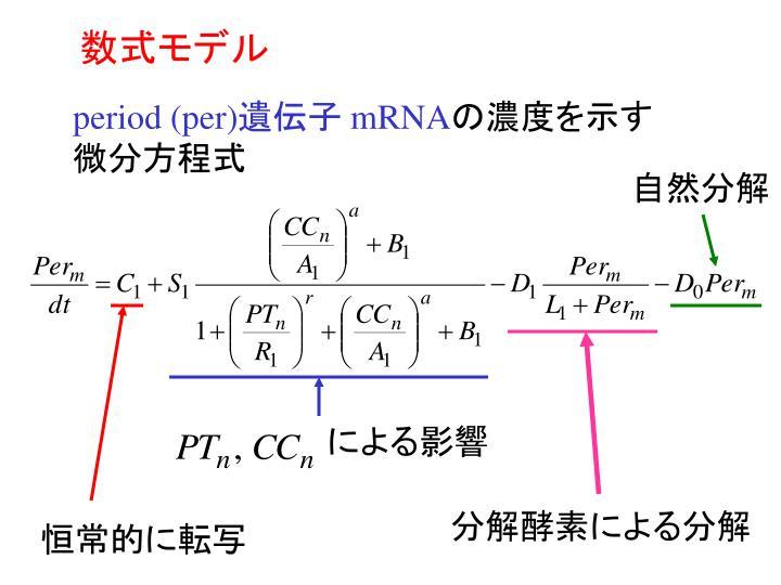 数式モデル
