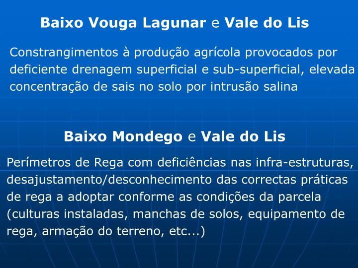 Baixo Vouga Lagunar