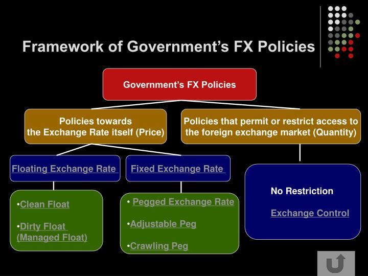 Framework of Government's FX Policies
