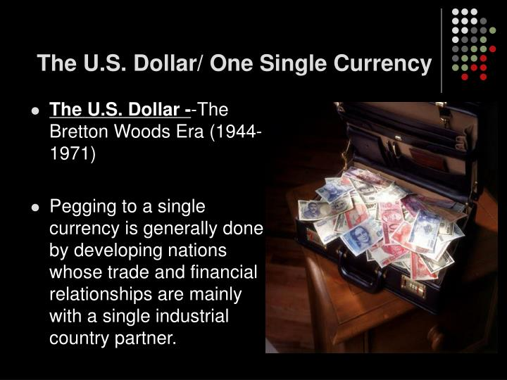 The U.S. Dollar/ One Single Currency