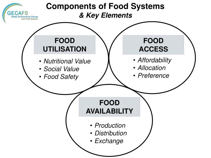 Components of Food Systems