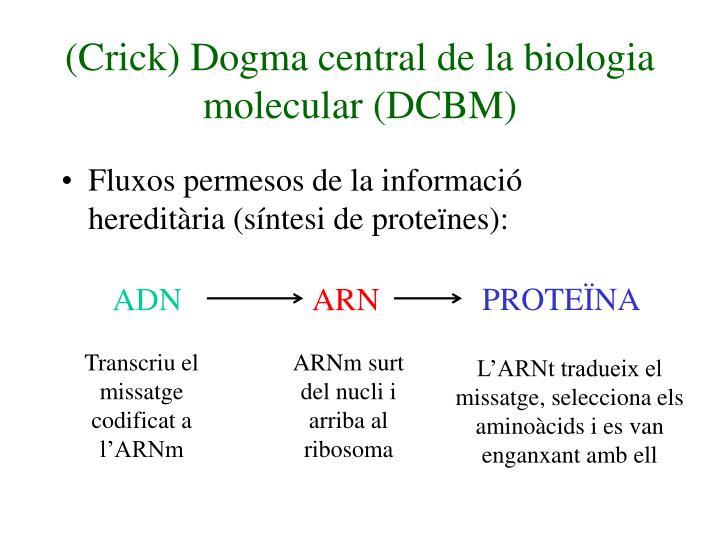 (Crick) Dogma central de la biologia molecular (DCBM)