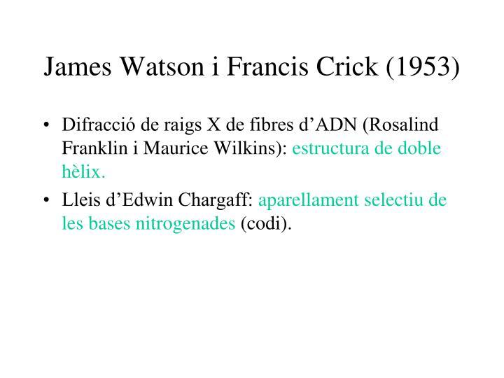 James Watson i Francis Crick (1953)