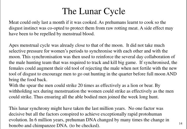 The Lunar Cycle