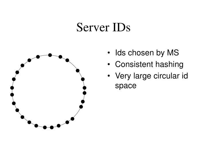Server IDs