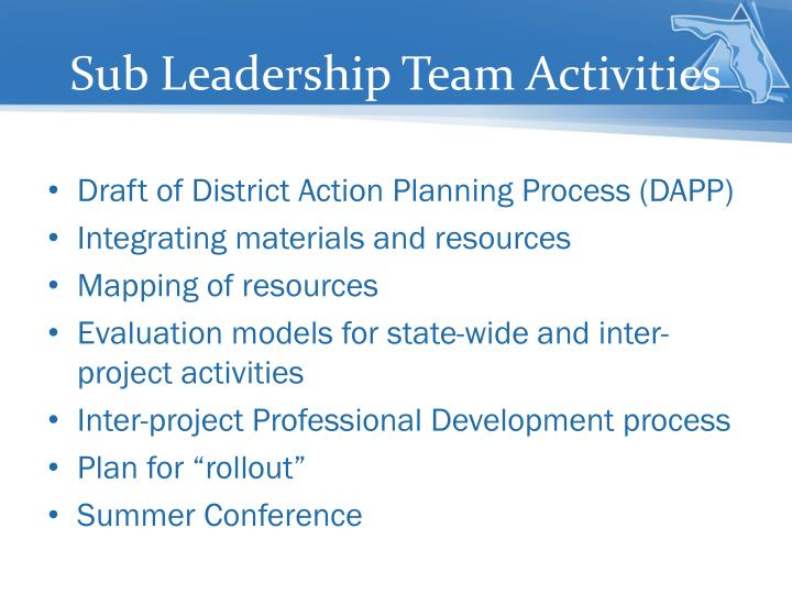 Sub Leadership Team Activities
