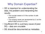 why domain expertise