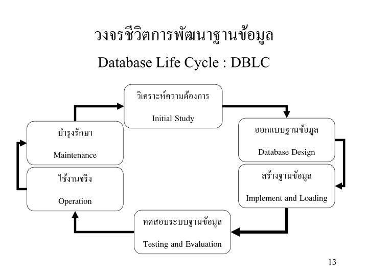 วงจรชีวิตการพัฒนาฐานข้อมูล