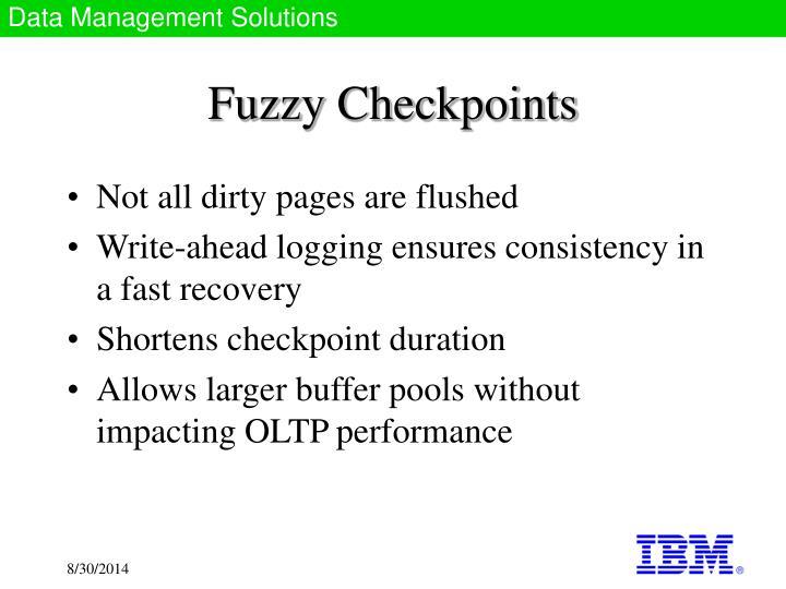 Fuzzy Checkpoints