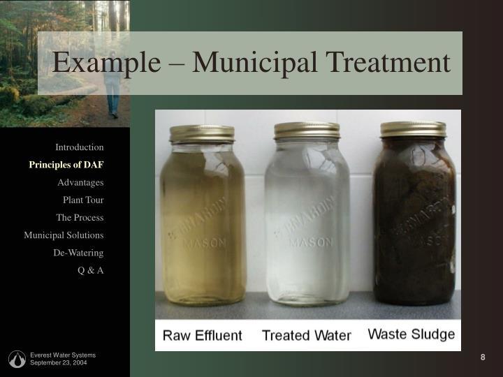 Example – Municipal Treatment