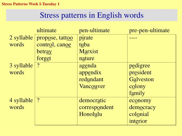 Stress Patterns Week I-Tuesday 1
