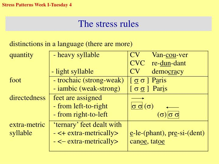 Stress Patterns Week I-Tuesday 4