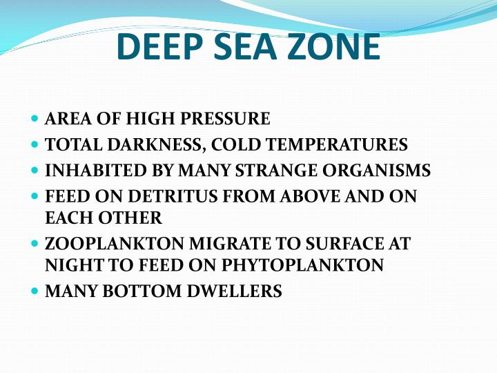 DEEP SEA ZONE