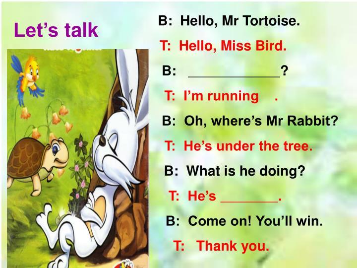 B:  Hello, Mr Tortoise.