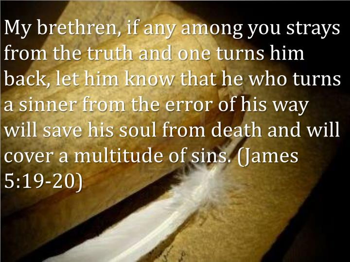 My brethren, if any among you strays from the truth and one turns him back, let him know that he who turns a sinner from the error of his way will save his soul from death and will cover a multitude of sins. (James 5:19-20)