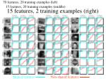 15 features 2 training examples right