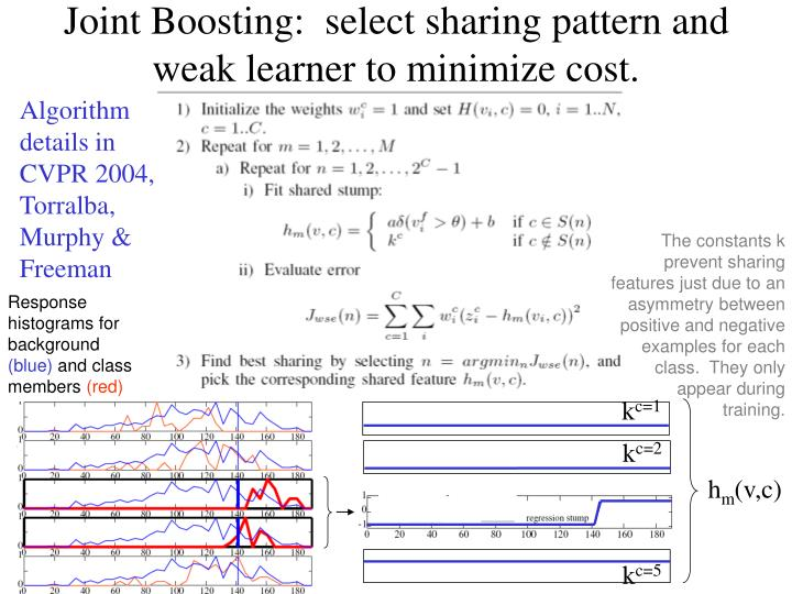 The constants k prevent sharing features just due to an asymmetry between positive and negative examples for each class.  They only appear during training.