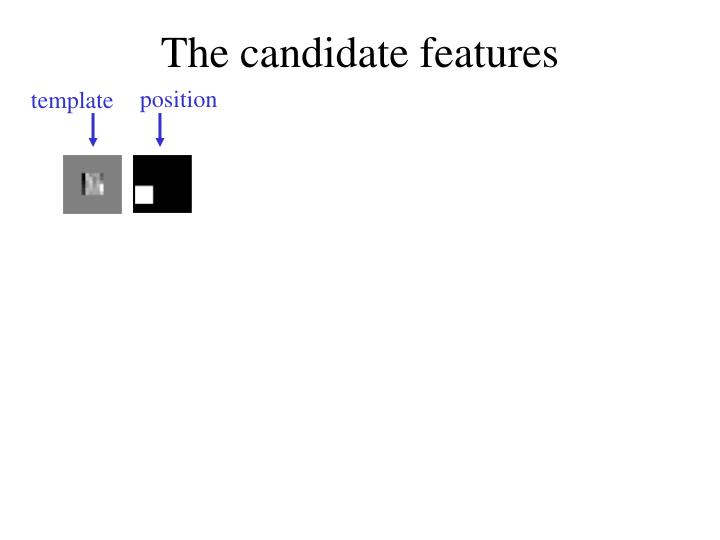 The candidate features
