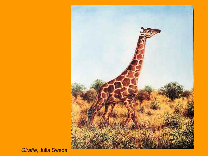 Giraffe julia sweda