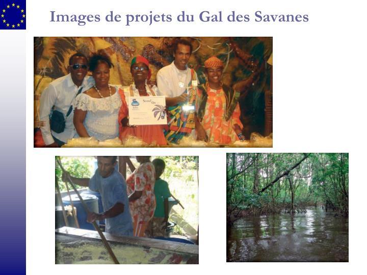Images de projets du Gal des Savanes