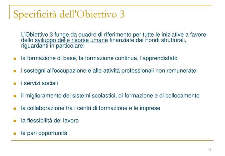 Specificità dell'Obiettivo 3