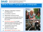 what is rise a program for undergrads