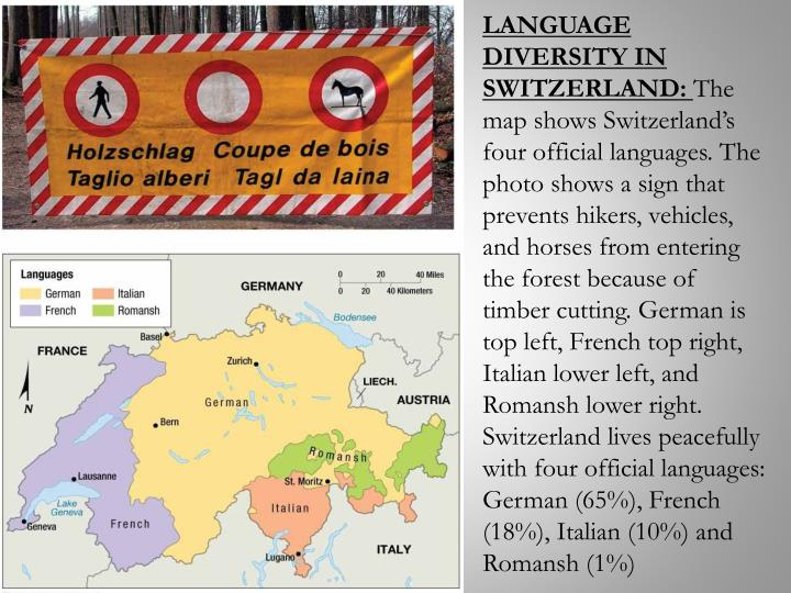LANGUAGE DIVERSITY IN SWITZERLAND: