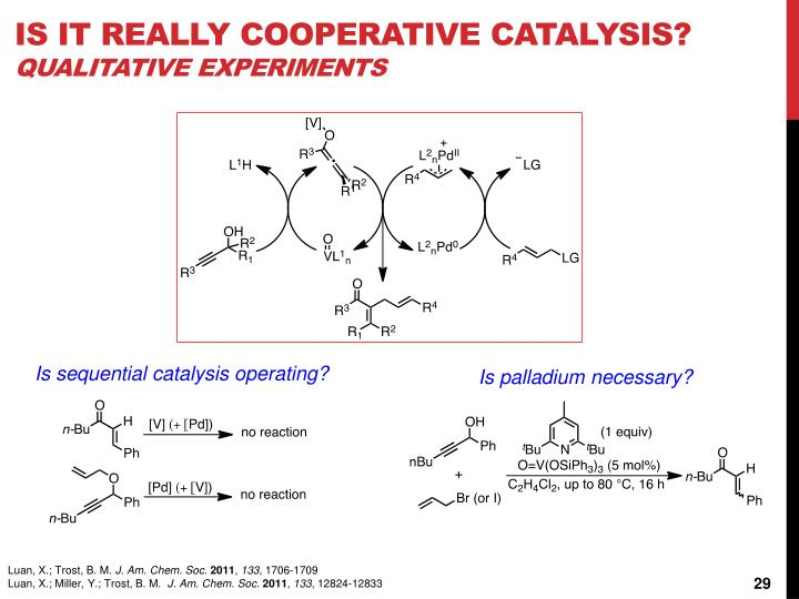 Is it really cooperative catalysis?