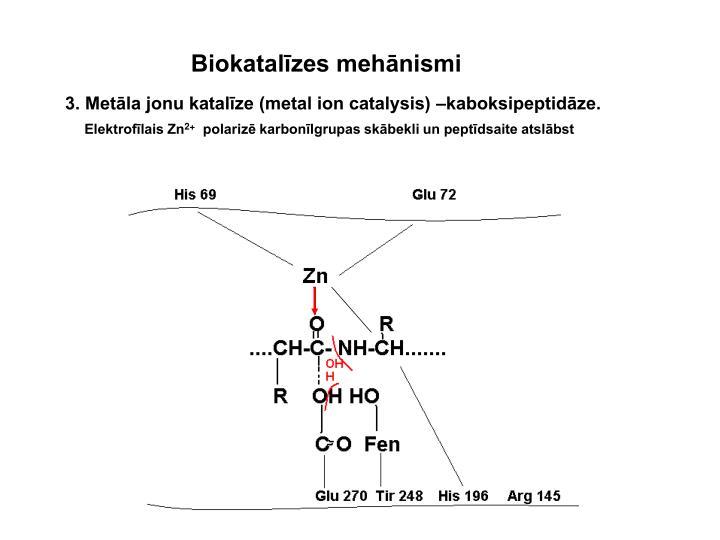 Biokatalīzes mehānismi