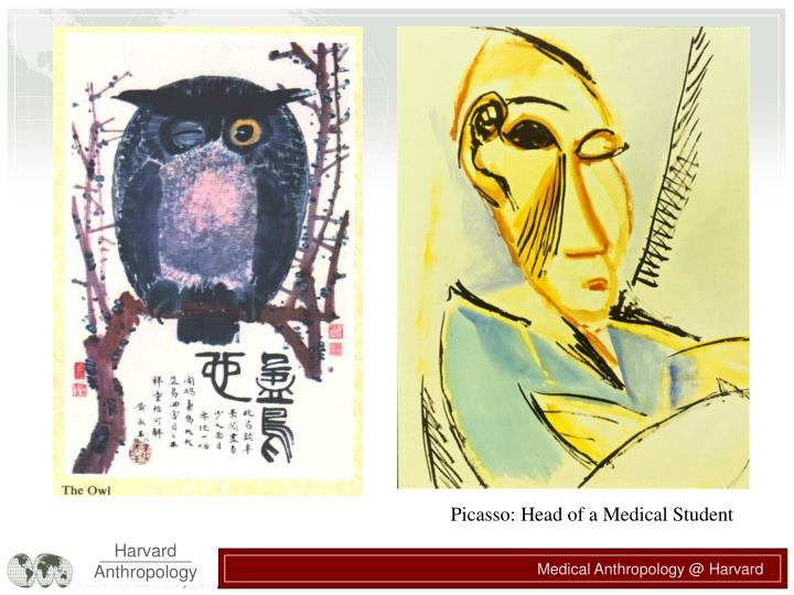Picasso: Head of a Medical Student